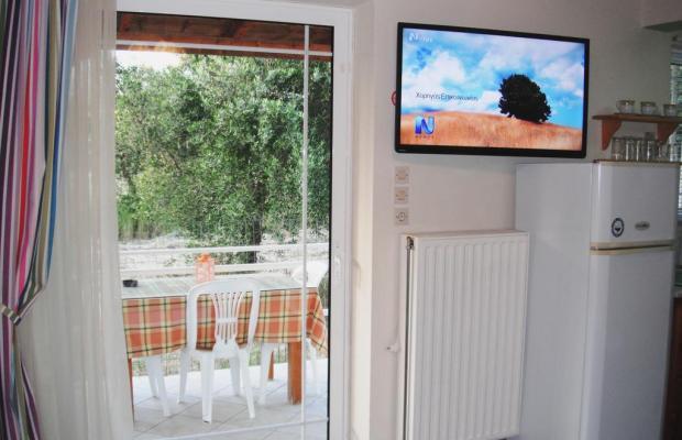 фотографии отеля The Green Villa изображение №7