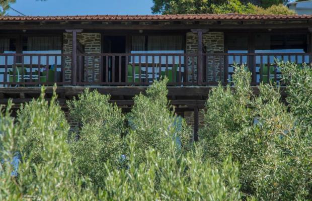 фотографии отеля Coral Blue изображение №3