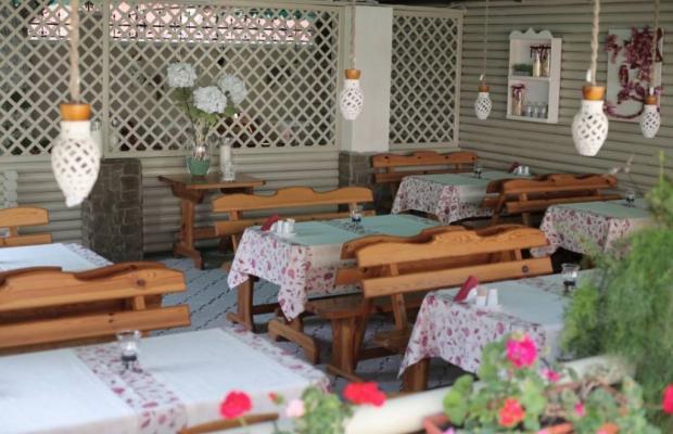 фотографии отеля Dolce Vita изображение №7