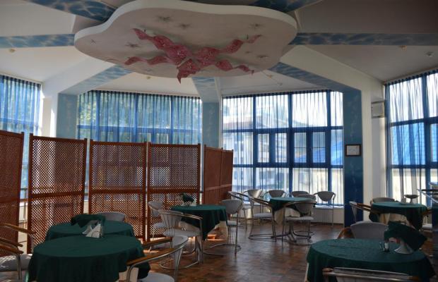 фотографии Морская Звезда (Starfish) изображение №48