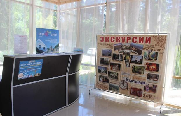 фотографии отеля Светлана (Svetlana) изображение №3
