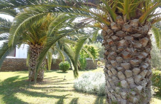 фотографии отеля Porto Matina изображение №3