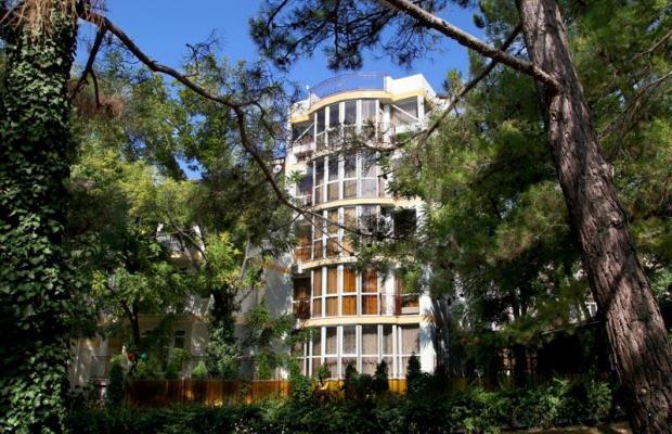 фото отеля Виктория изображение №13