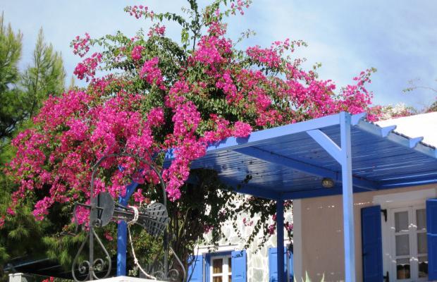 фото отеля Paradise Santorini Resort (ех. Best Western Paradise Hotel) изображение №9