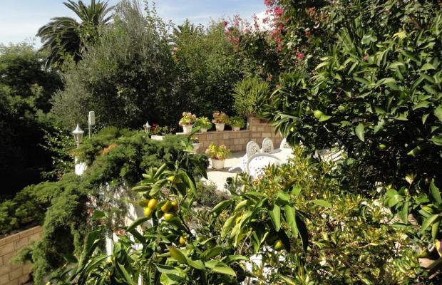 фотографии отеля Sun Rose Apart (ex. Villa Hara)  изображение №19