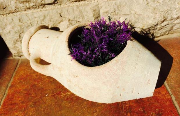 фотографии отеля Villa Bono изображение №7