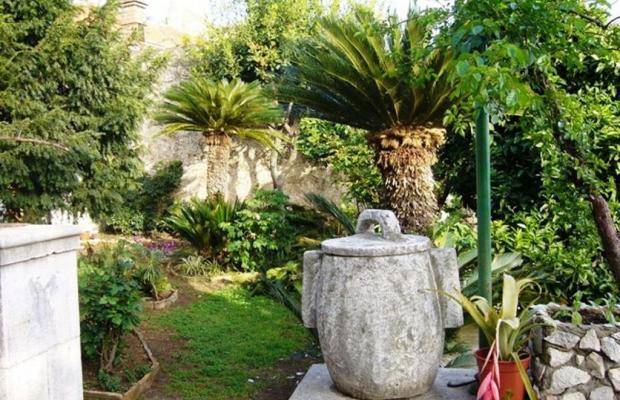 фотографии отеля Villa Iveta изображение №19