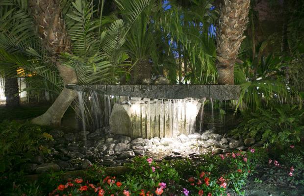 фото отеля Areca изображение №33
