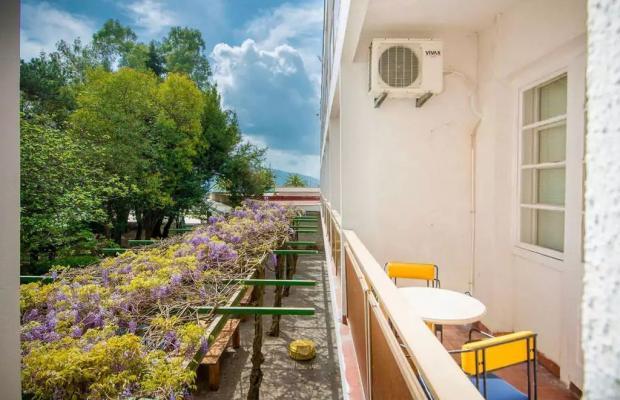 фото отеля Hotel Mimoza изображение №5