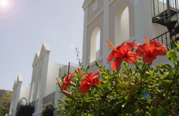 фото отеля Aloha Gardens изображение №17