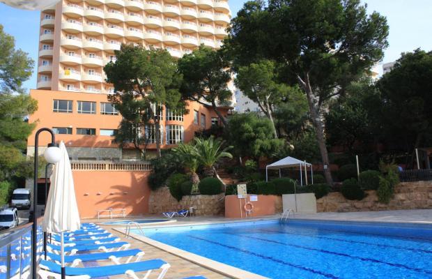 фотографии отеля Blue Bay Hotel Cala Mayor изображение №35