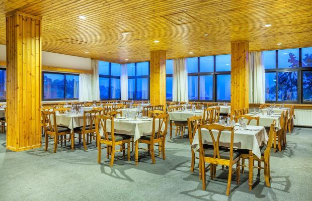 фотографии отеля Troodos Hotel изображение №11