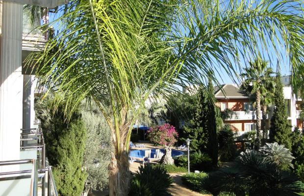 фотографии Allsun Hotel Estrella & Coral de Mar Resort (ex. Estrella Coral de Mar Resort Wellness & Spa) изображение №12