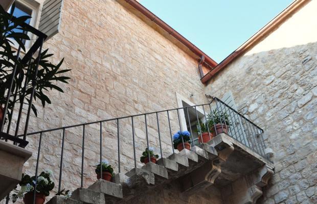 фото отеля Villa Mama изображение №5