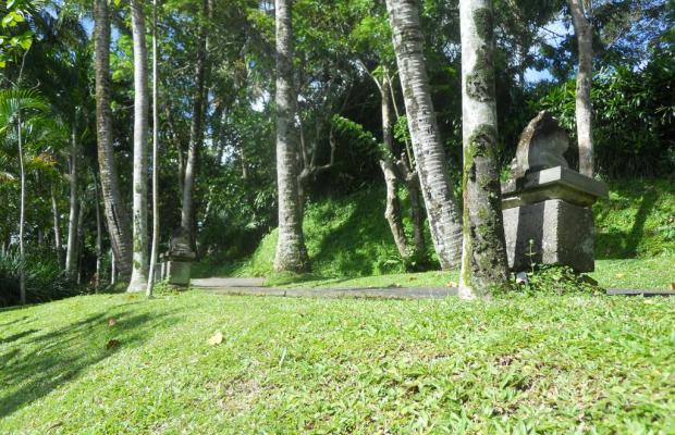 фото Villa Prana Shanti изображение №18