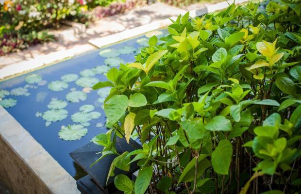 фотографии отеля Zen Resort изображение №7