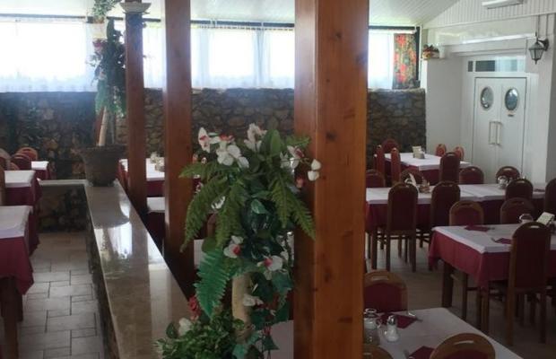 фото отеля Hotel Omorika изображение №5