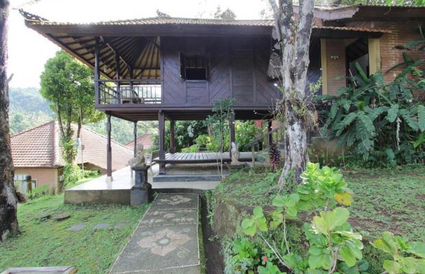 фотографии Melanting Cottages изображение №28