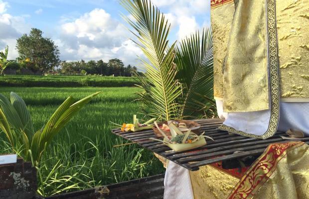фотографии Suly Resort Yoga and Spa изображение №16