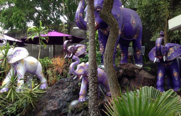 фото отеля The Ayu Kintamani изображение №9