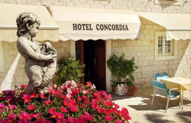 фото Concordia изображение №2