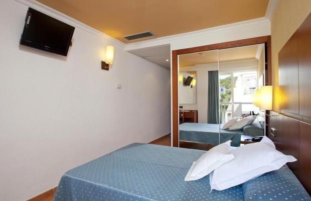 фотографии Simbad изображение №8