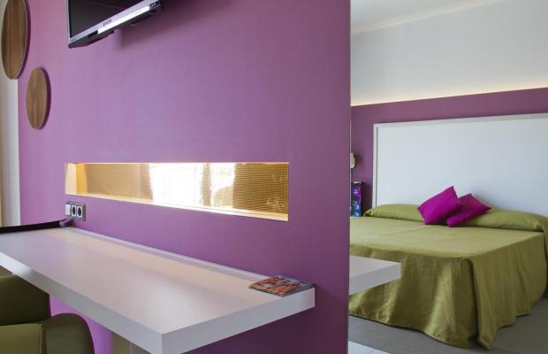 фото The Purple by Ibiza Feeling изображение №6