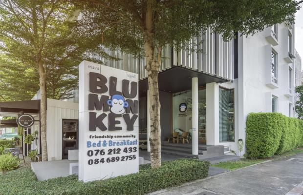 фотографии отеля Blu Monkey Bed & Breakfast Phuket изображение №7