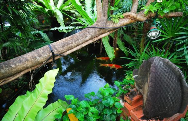 фото отеля Sugar Hut Resort изображение №29