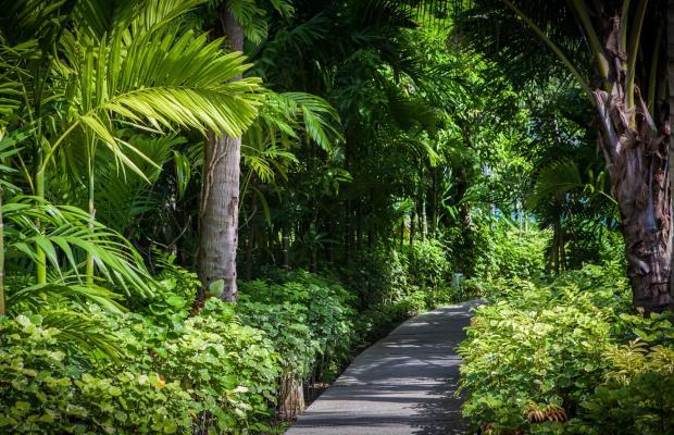 фото Peace Resort Bungalow изображение №2