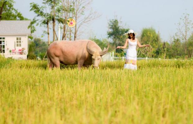 фото Jirung Health Village изображение №14