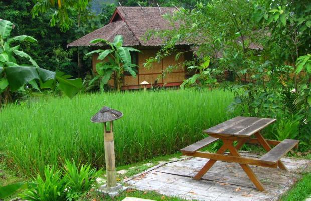фотографии Fern Resort изображение №32