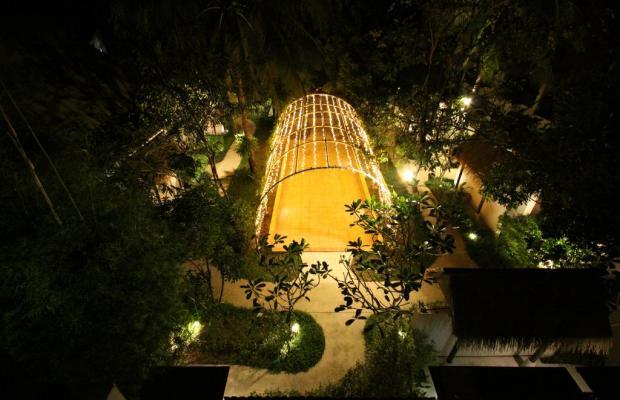 фотографии отеля Mimosa Resort & Spa изображение №7