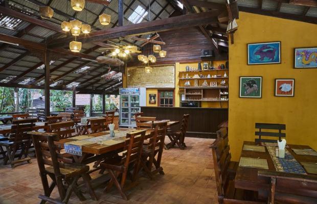 фотографии отеля Natural Wing Health Resort & SPA изображение №23