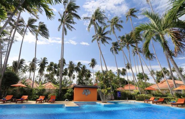 фото Viva Vacation Resort изображение №14