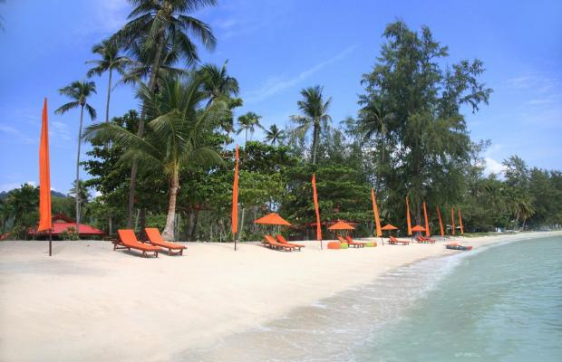 фотографии Viva Vacation Resort изображение №4