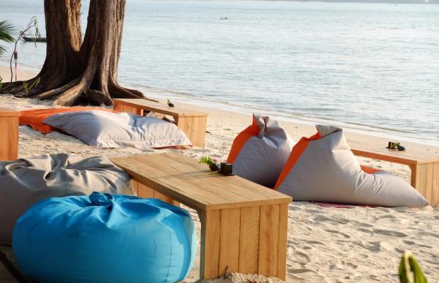 фотографии отеля Viva Vacation Resort изображение №3