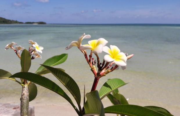 фото отеля Papillon Resort изображение №5