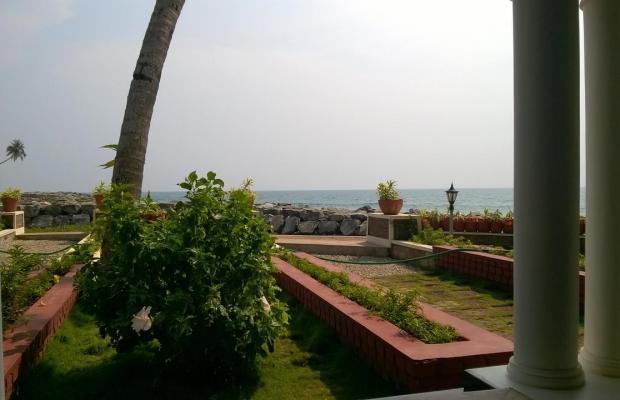 фото Palm Tree Bungalow изображение №26