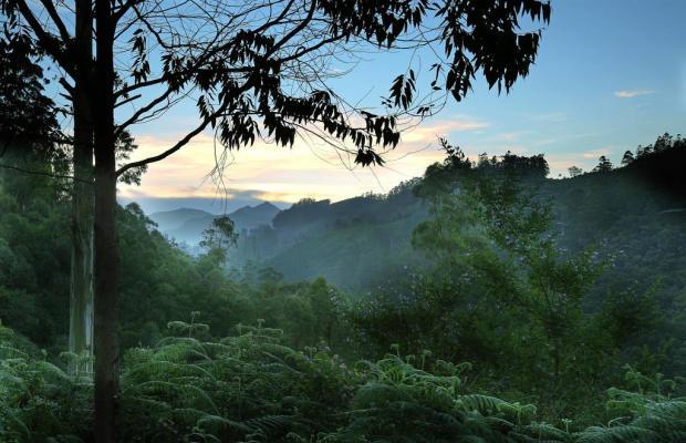 фото Elysium Garden Hill Resort изображение №18