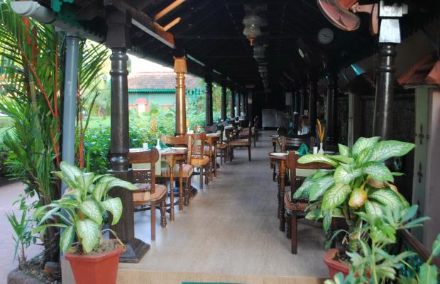 фотографии отеля Casa Severina изображение №15
