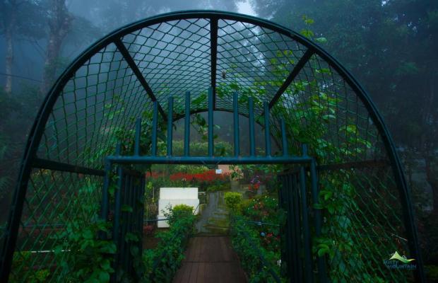 фотографии отеля Misty Mountain Resort изображение №47