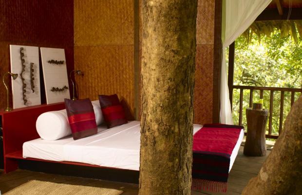 фото Rainforest Boutique Resort изображение №18