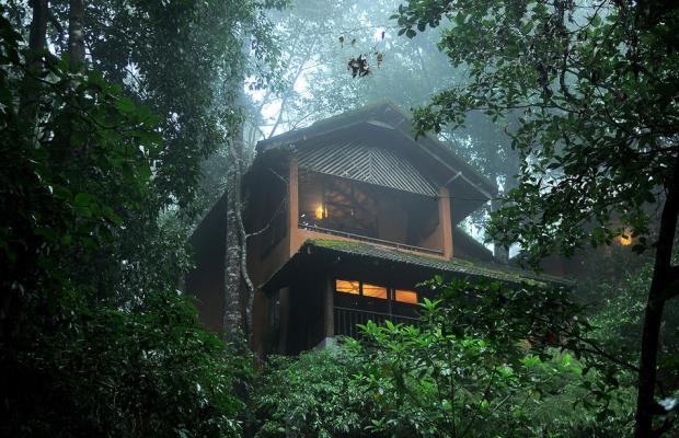 фотографии отеля Vythiri Resort изображение №19