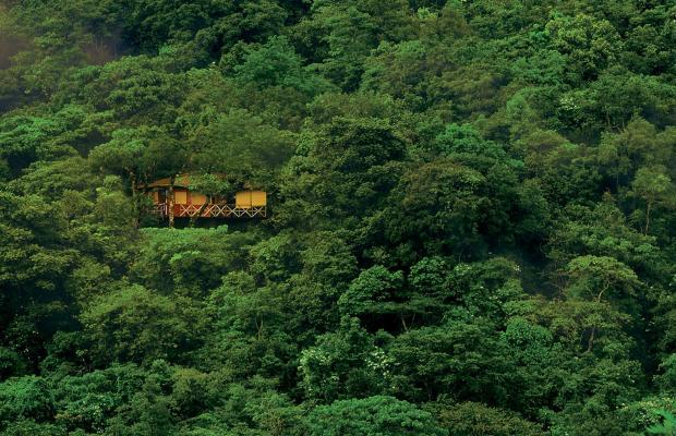 фото отеля Vythiri Resort изображение №5