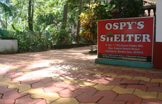 фото отеля Ospy's Shelter изображение №5