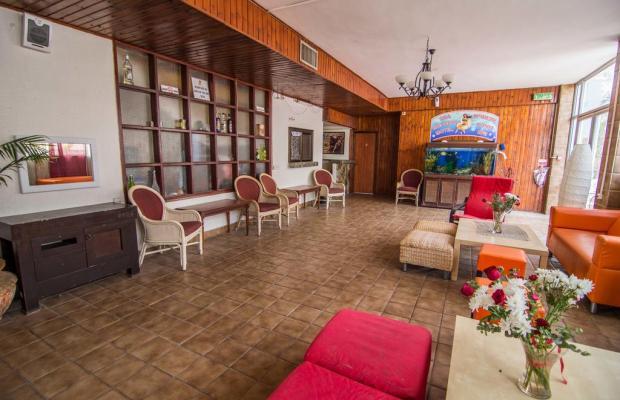 фотографии Sea Princess Motel изображение №20
