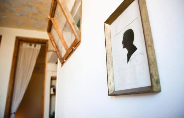 фотографии отеля Villa Vilina Oasis изображение №27