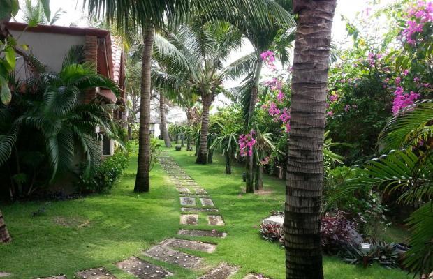 фотографии отеля Green Papaya Organic Village изображение №35