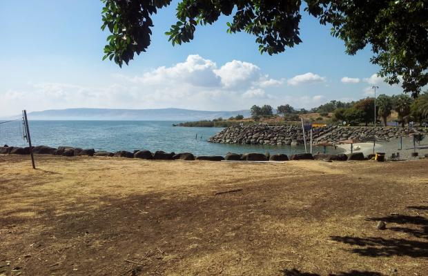 фотографии отеля Amnun 2000 Recreation Village (ex. Tulip Inn Sea of Galilee) изображение №11